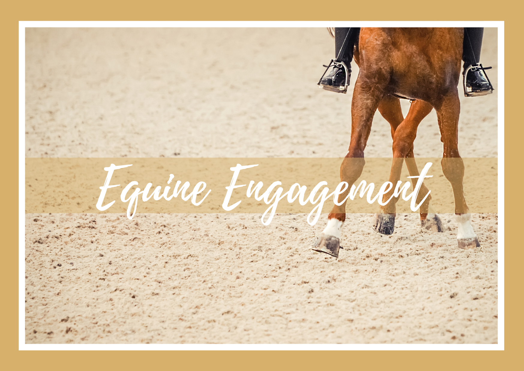 Taylor Made Equestrian Business Services Equine Engagement